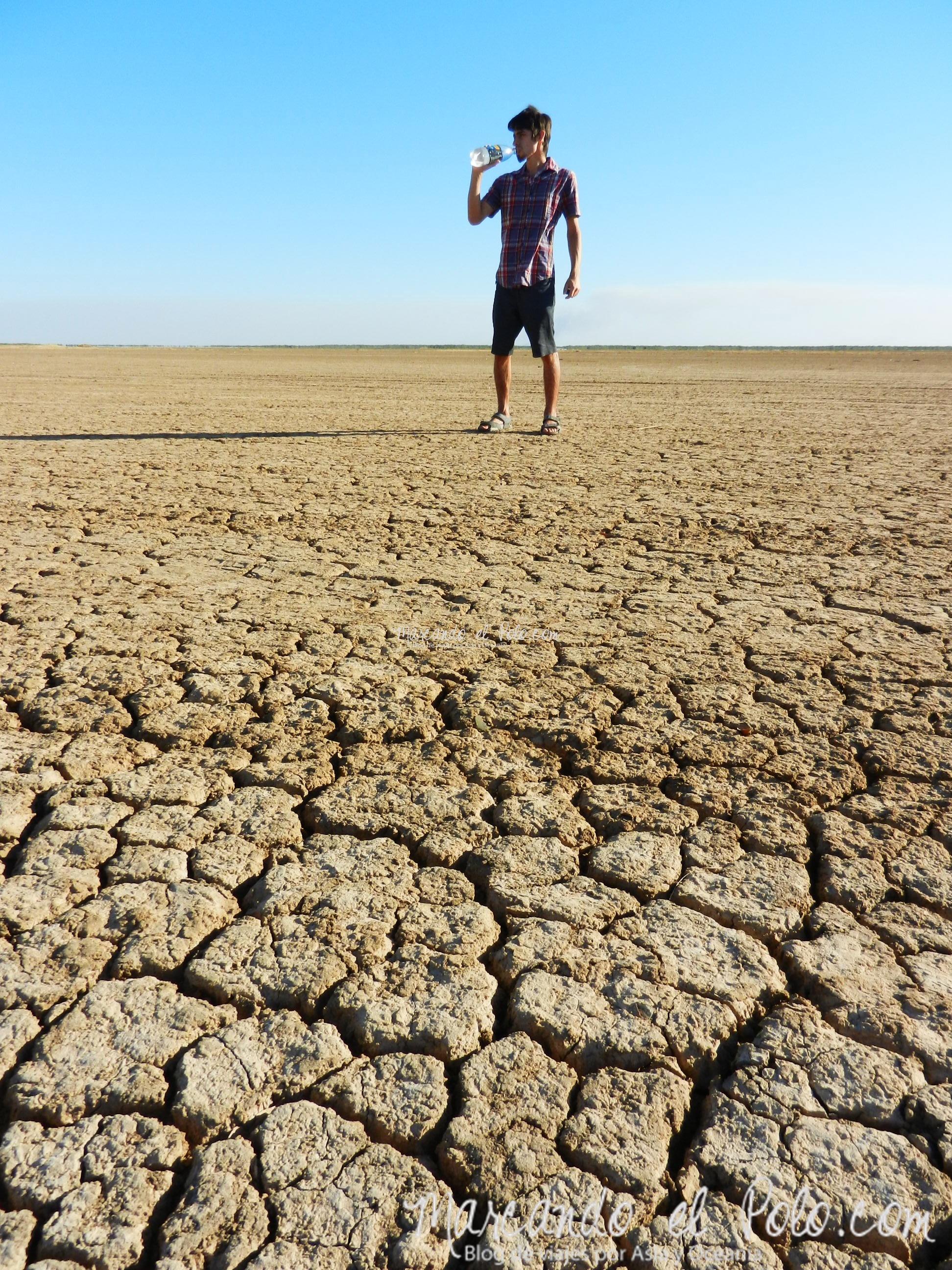 Viajar a Australia: desierto australiano