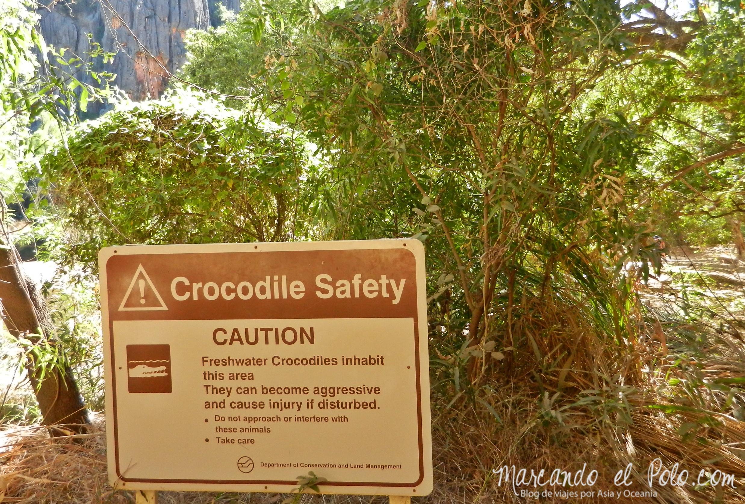 Viajar a Australia: cuidado con cocodrilos