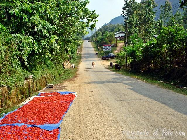 Nong Khiaw - Norte de Laos