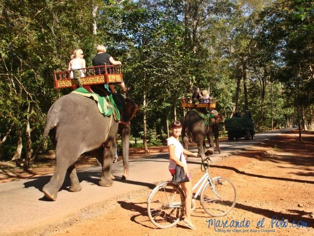 Templos de Angkor: Elefantes o bicicleta