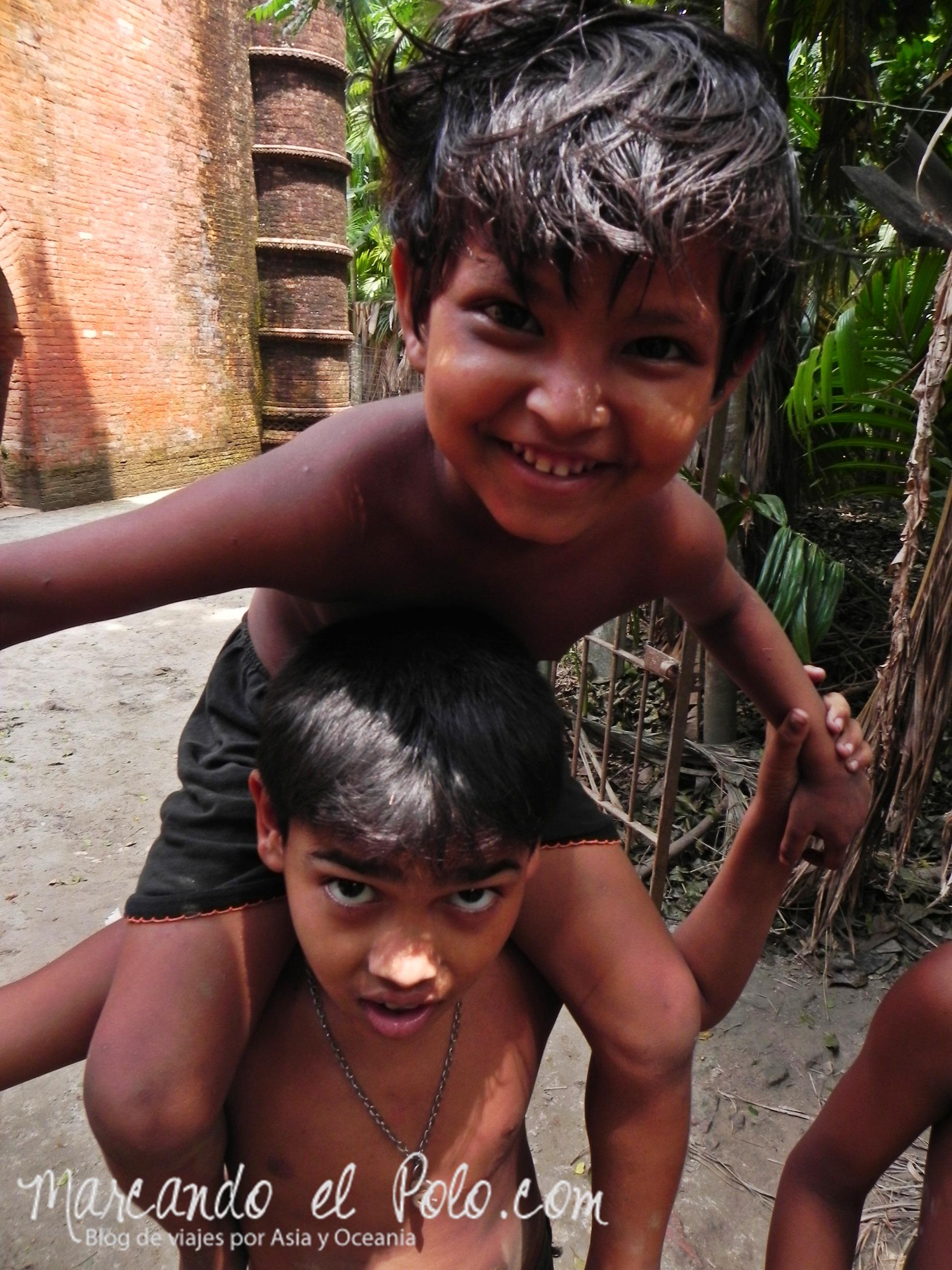 Nenes en Bangladesh