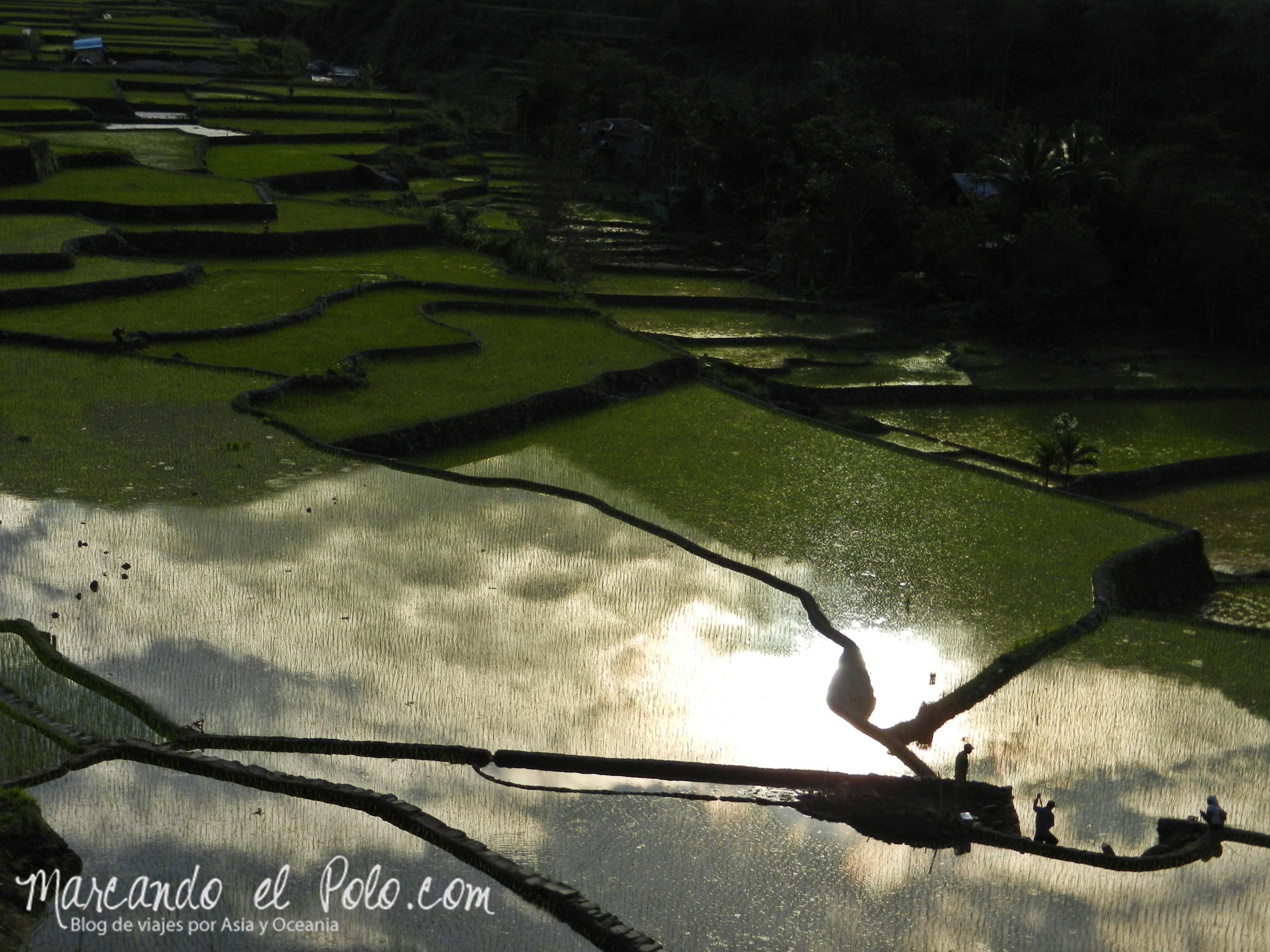 Terrazas de arroz en Filipinas: Atardecer en Hapao