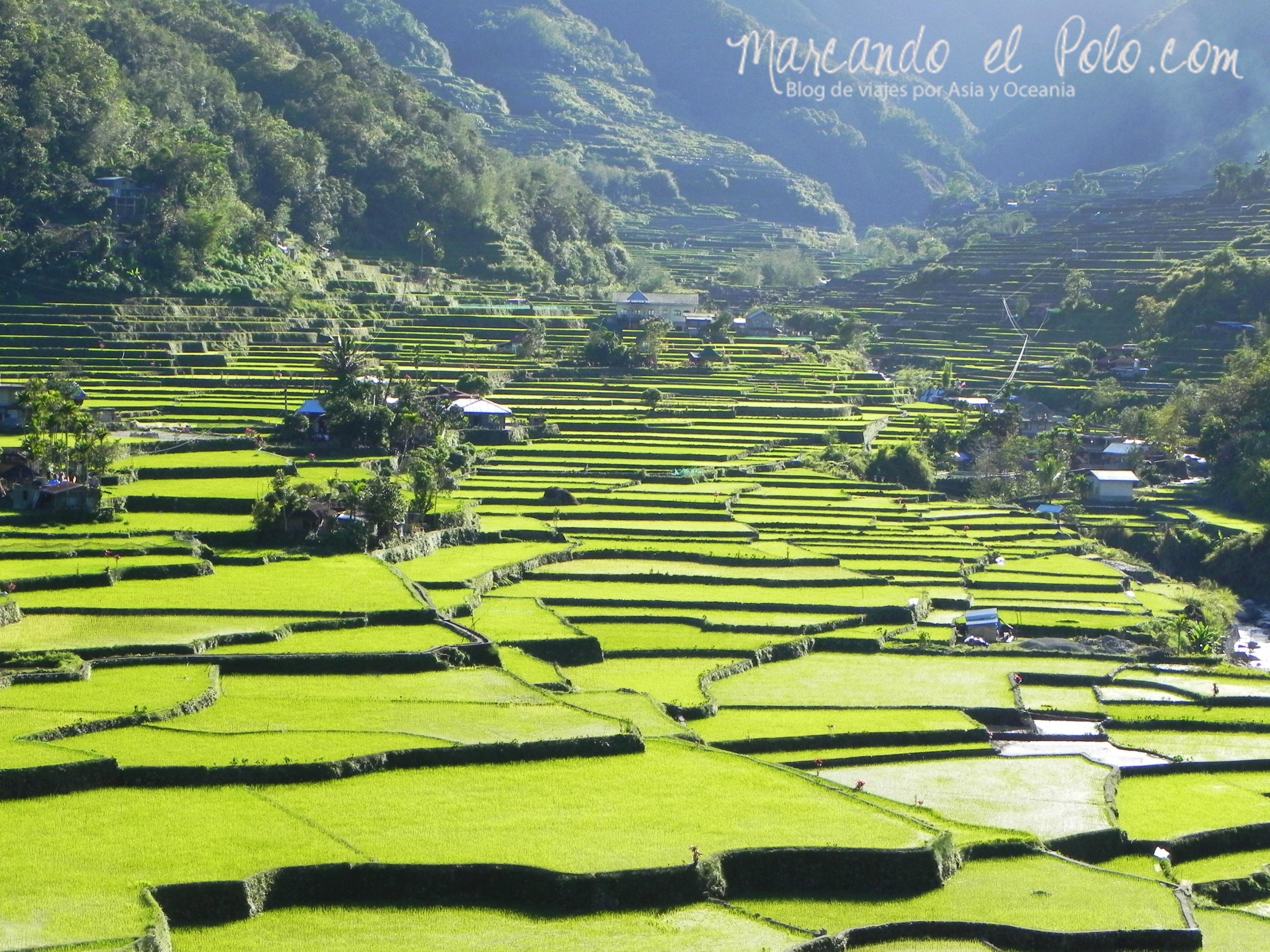 Terrazas de arroz en Filipinas: Hapao