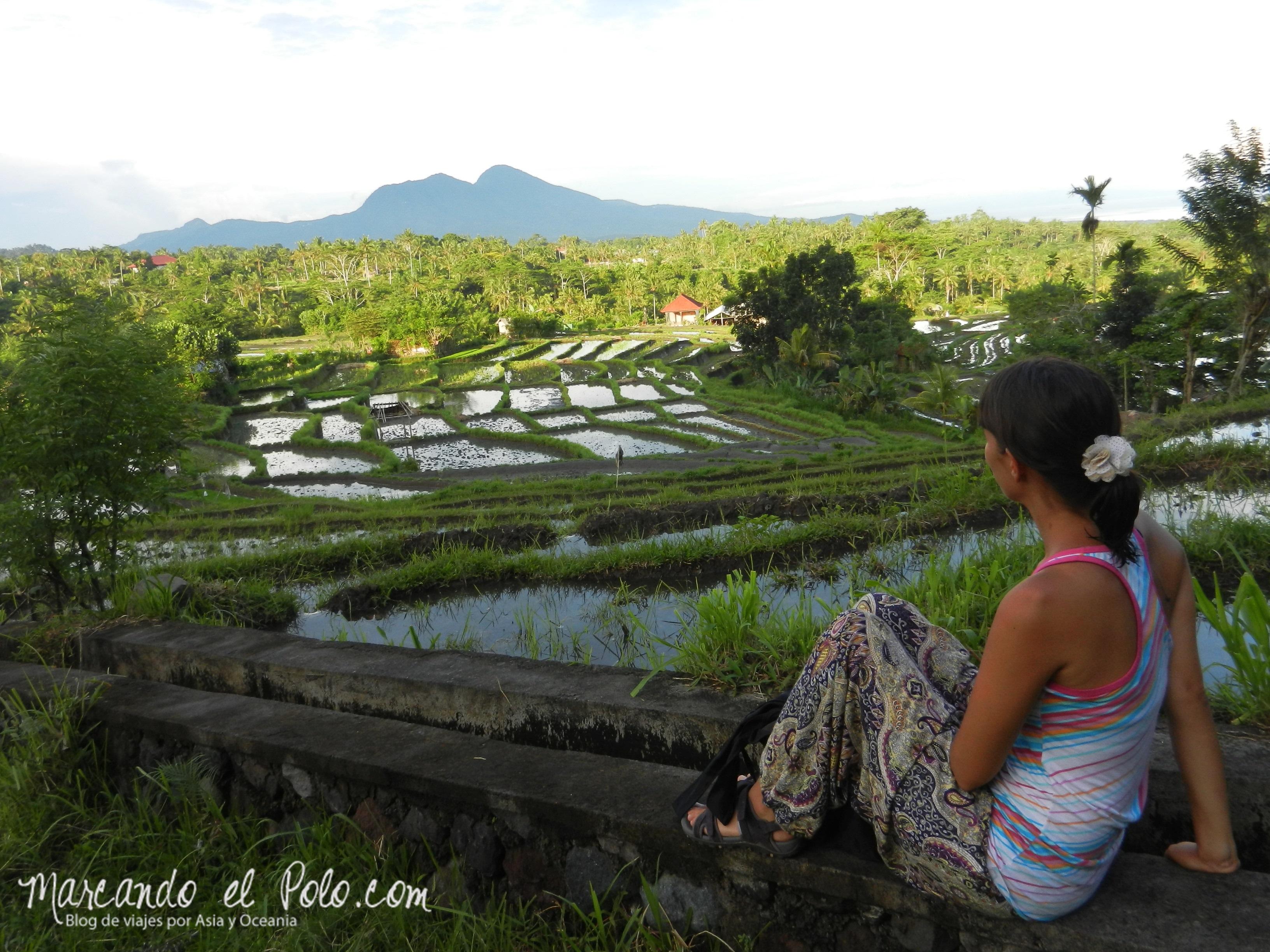 Bali, Indonesia: En las tranquilas calles de Desa Macang.