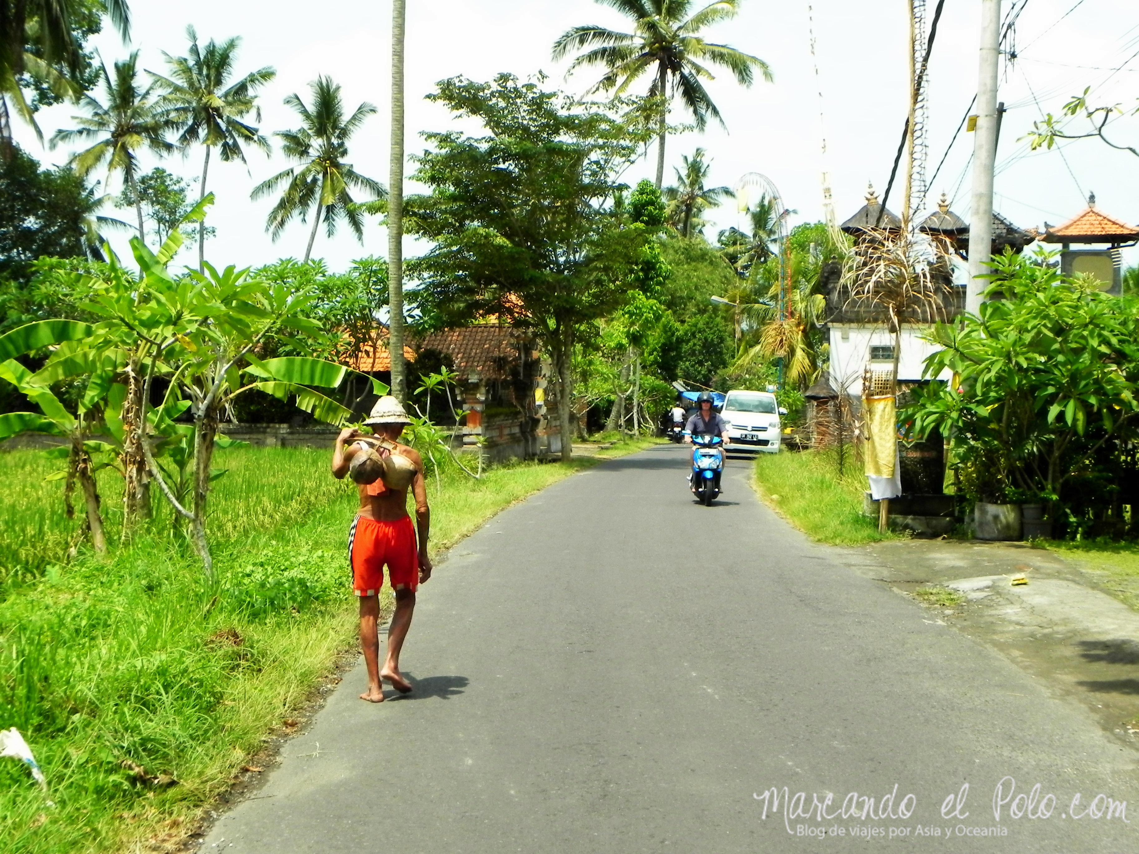 Calle de Ubud, Bali, Indonesia