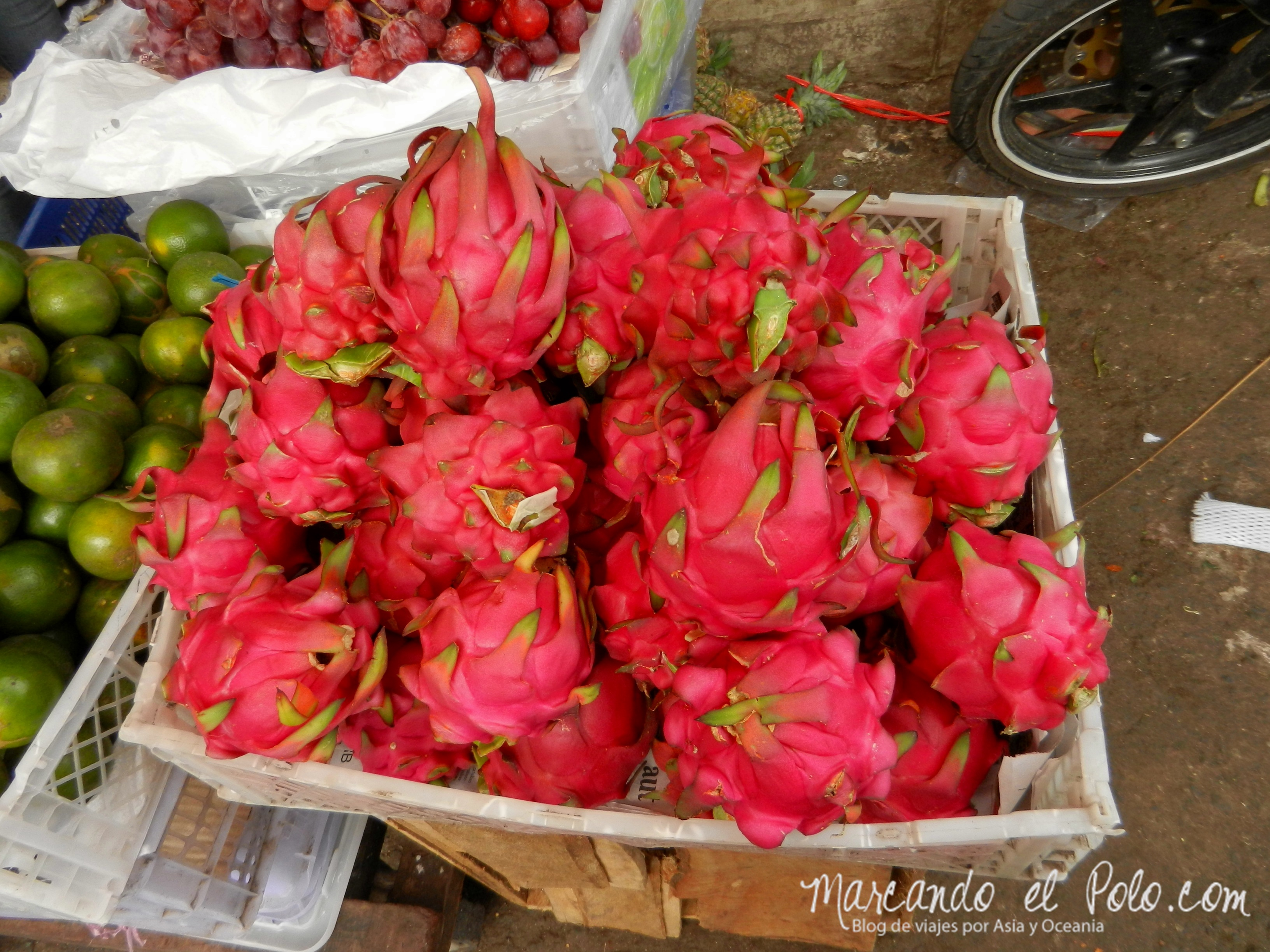 Comida de Indonesia - fruta dragon fruit