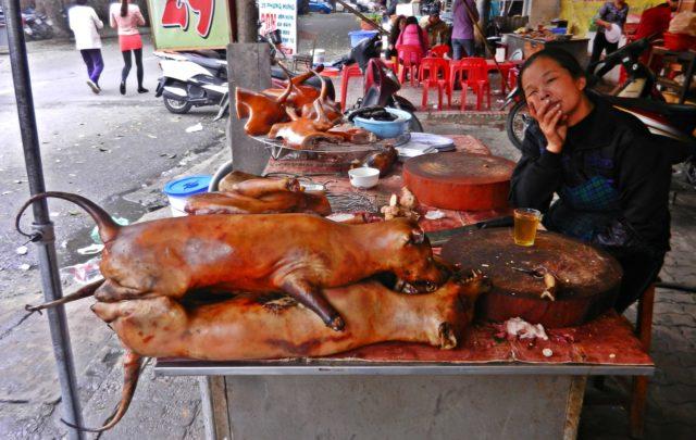 Carne de perro en Hanoi, Vietnam