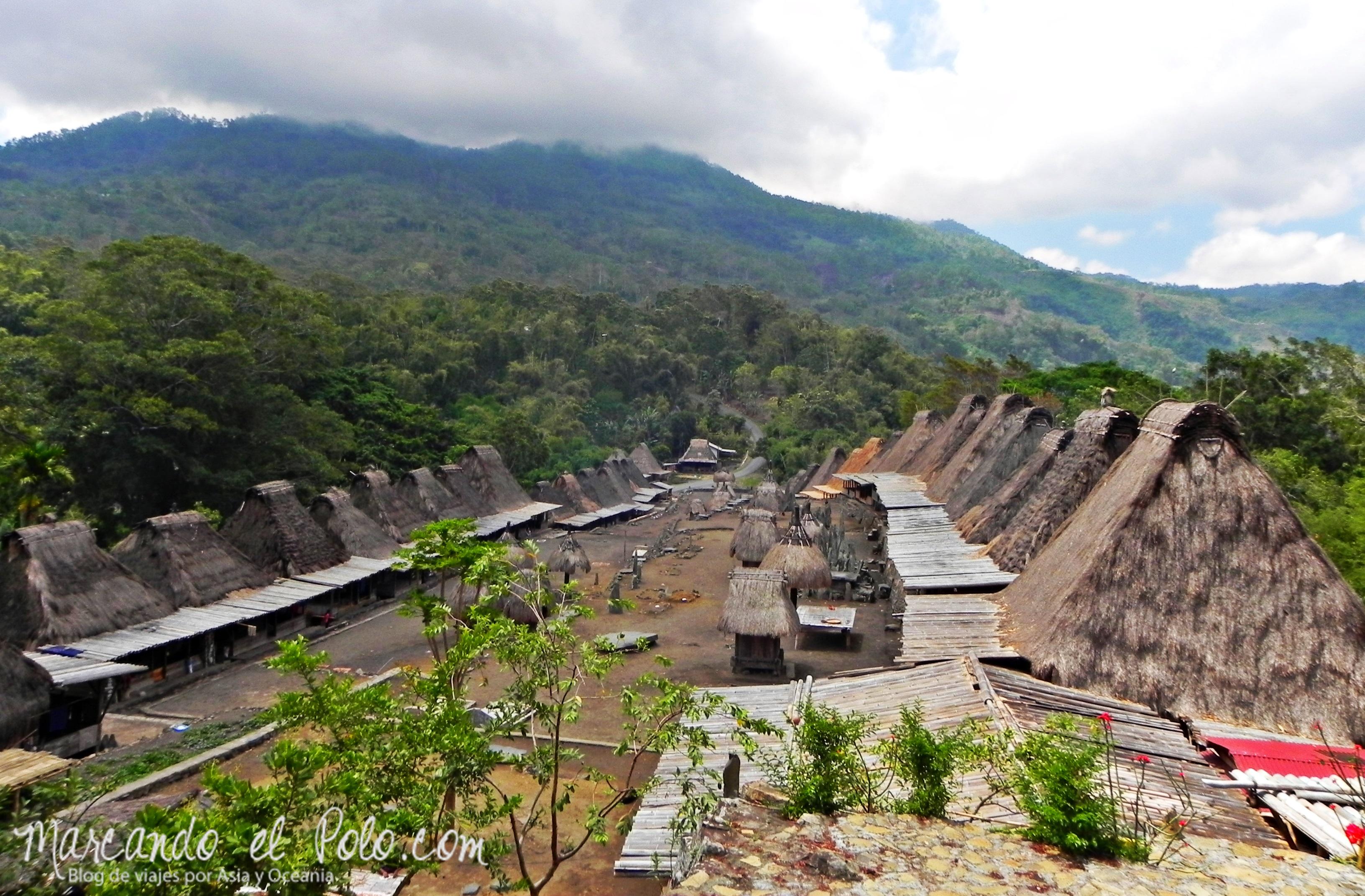 Viajar a Indonesia - Aldea tradicional Bajawa
