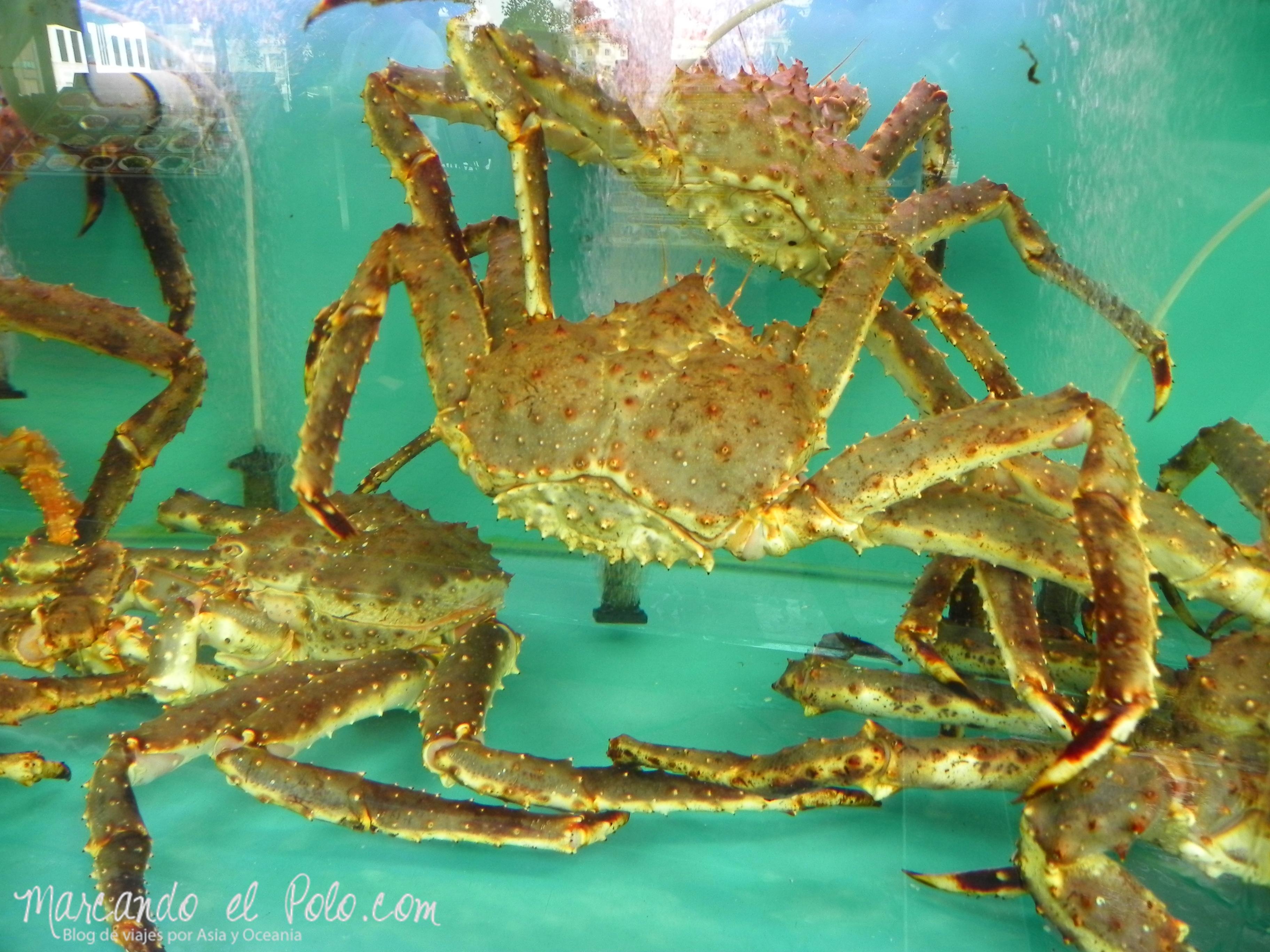 Chili Crab, Singapur, Asia