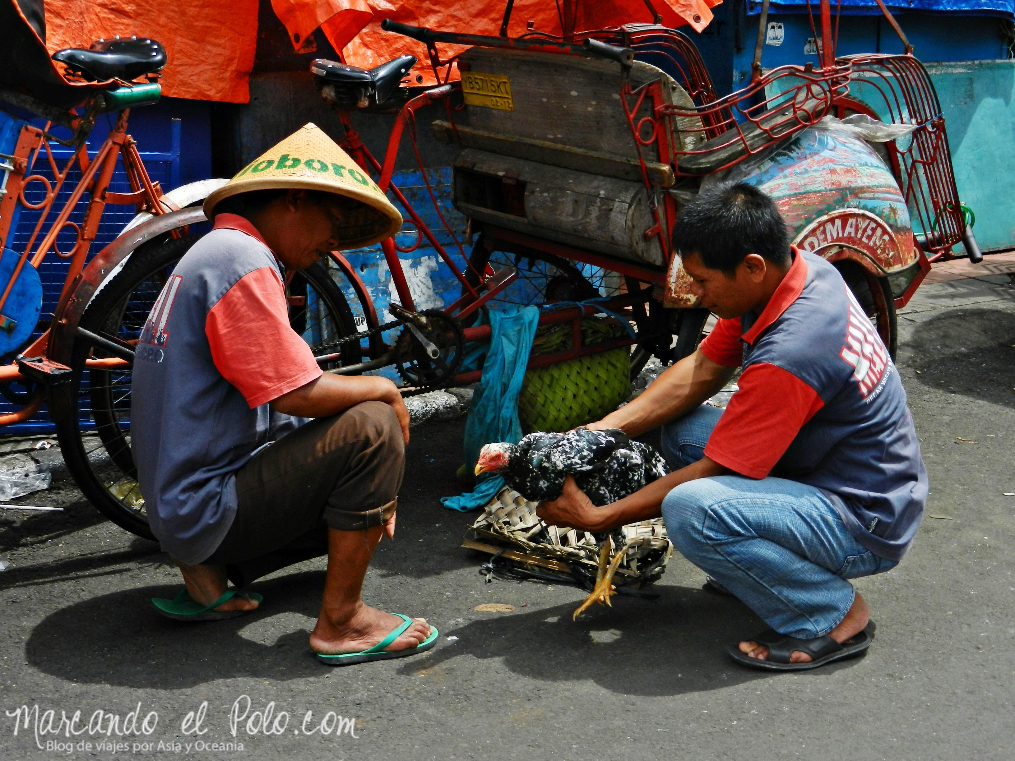 Viajar a Indonesia - Makassar