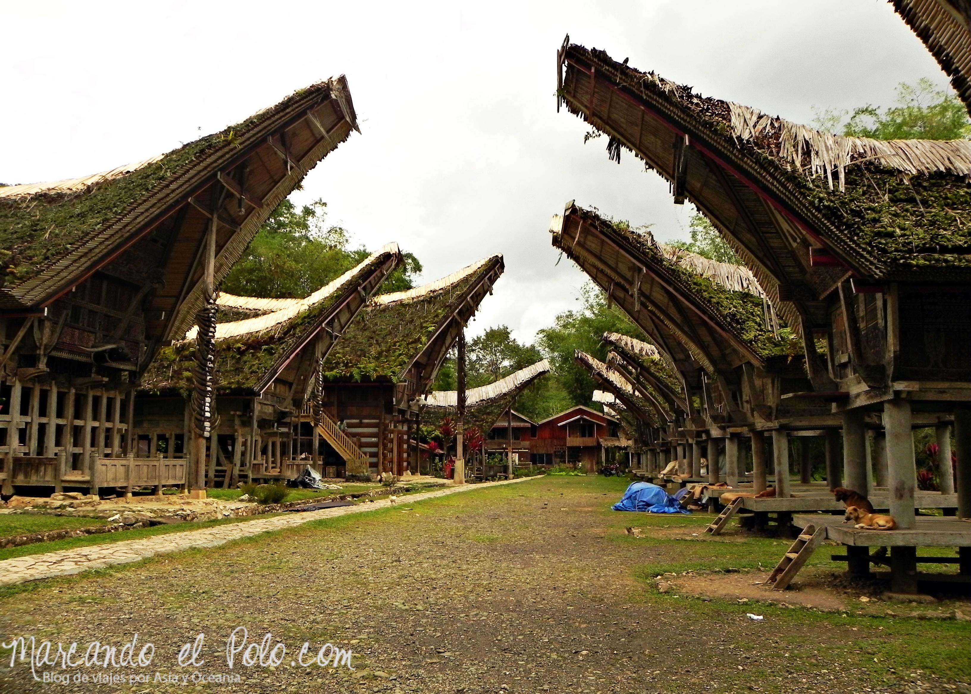 Viajar a Indonesia - Tana Toraja, Sulawesi