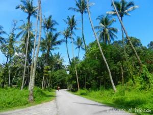 Viajar a Singapur - Pulau Ubin