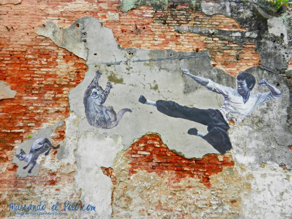 Escondido detrás de un callejón, Bruce Lee le pega una patada a los gatos.