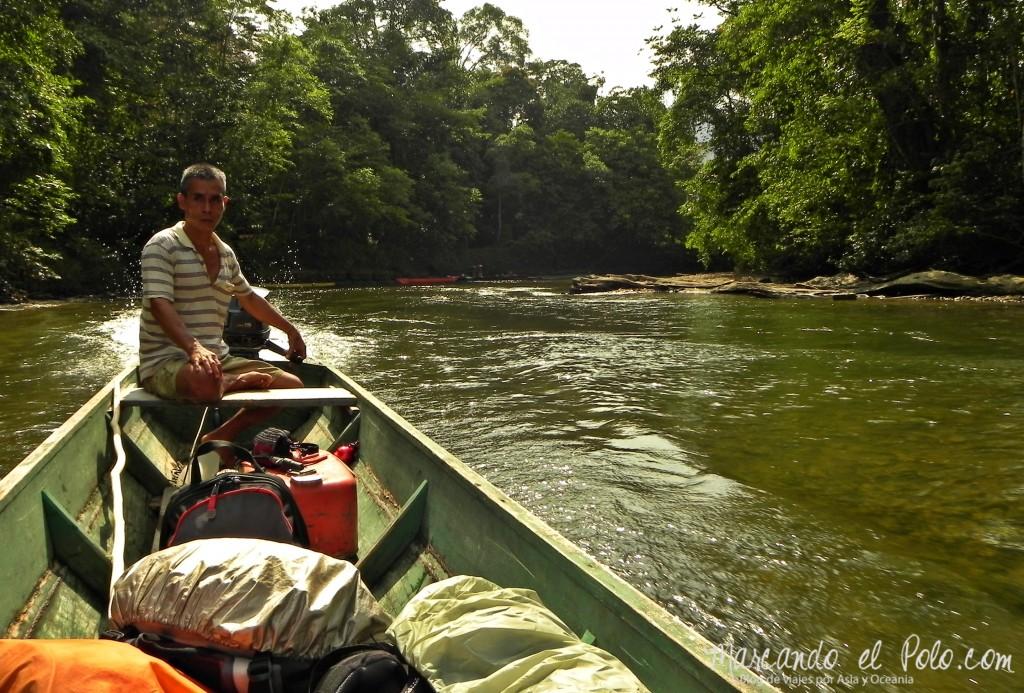 Itinerario viajar a Malasia: caminata a los Pinnacles, Gunung Mulu, Borneo