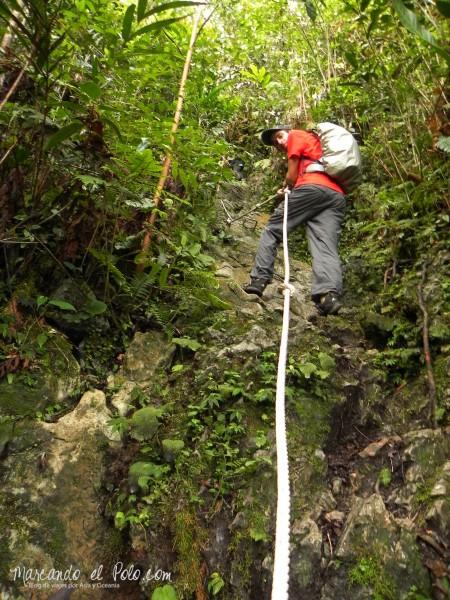 Itinerario viajar a Malasia: subiendo a los Pinnacles, Gunung Mulu