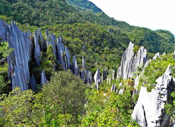 Itinerario viajar a Malasia: Los Pinnacles, Gunung Mulu, Borneo