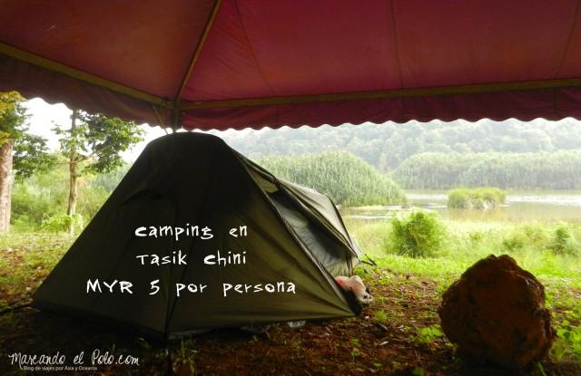 Camping en Lake Chini, Malasia