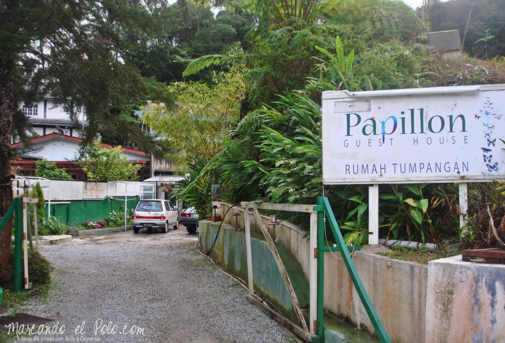 Itinerario viajar a Malasia: Papillon Guesthouse, Cameron Highlands, Malasia