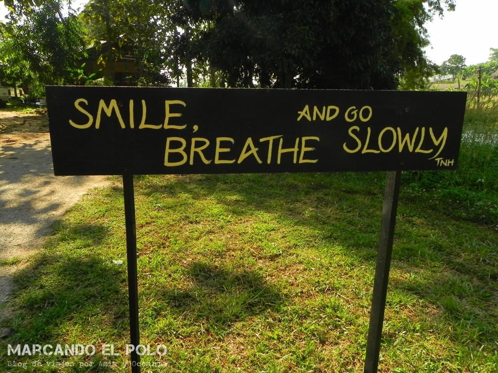 Meditacion en Tailandia (10)
