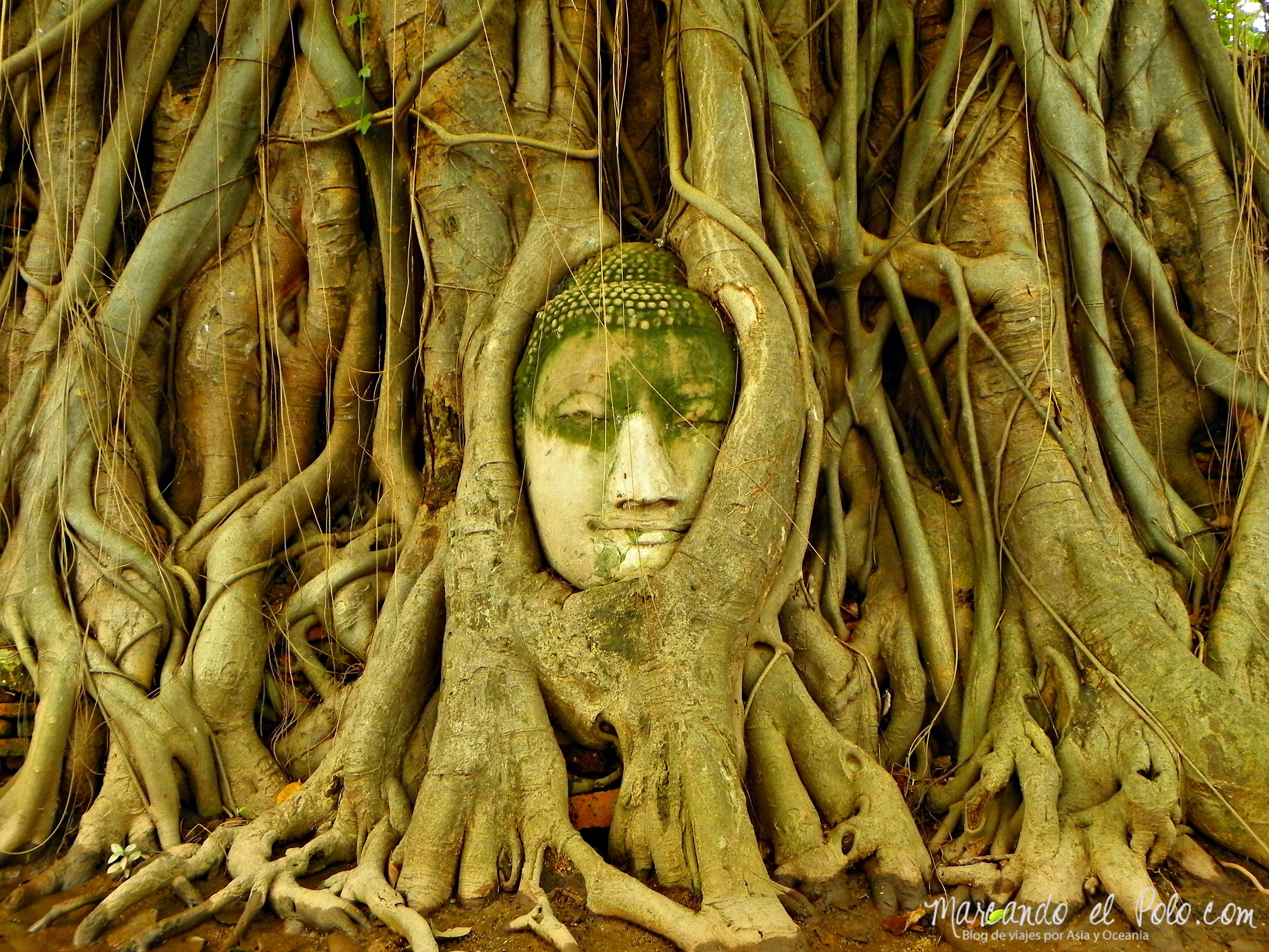 Principales destinos turisticos del Sudeste Asiatico - Ayutthaya, Tailandia