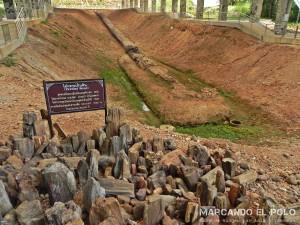 Bosque petrificado, Tak, Tailandia