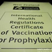 """La famosa """"libreta amarilla"""" que van a pedir en caso que necesites la vacuna contra la fiebre amarilla."""
