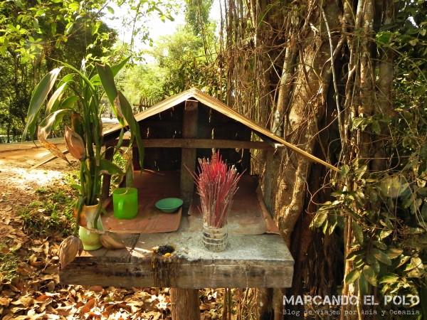 Viajar a Tailandia 15