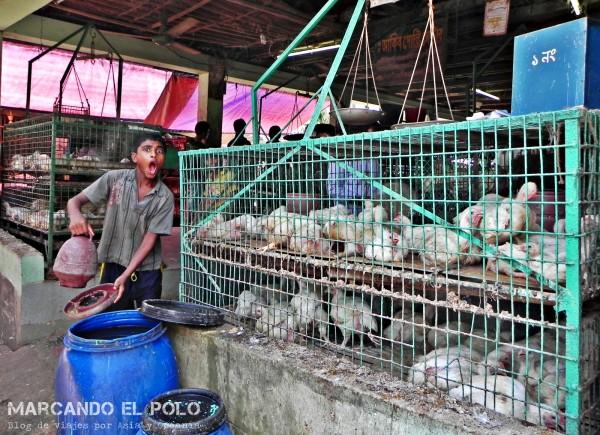 Viajar a Bangladesh - mercado