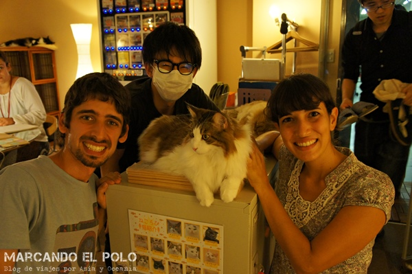 Cafe con gatos Nekorobi