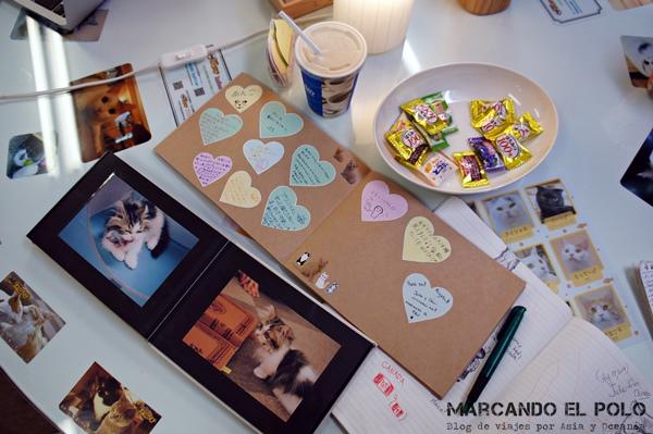 escritorio de Nekorobi, Cafe con gatos de Tokio
