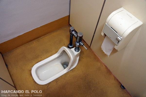 Letrina en Japón (detalle: tiene papel higiénico)