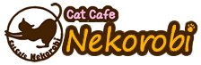 Cafe con gatos en Tokio - Nekorobi