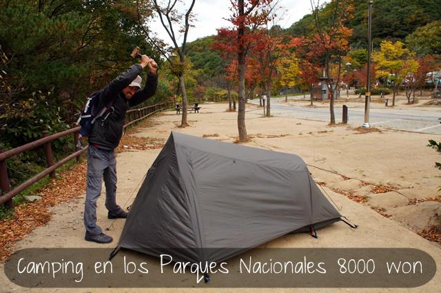 Presupuesto mochilero corea Camping.