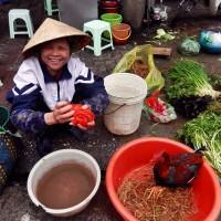 itinerario viajar a vietnam - vendedora