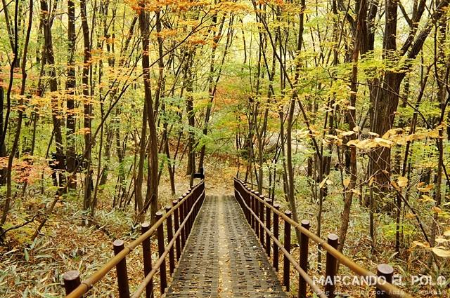 Parque Nacional Chiaksan
