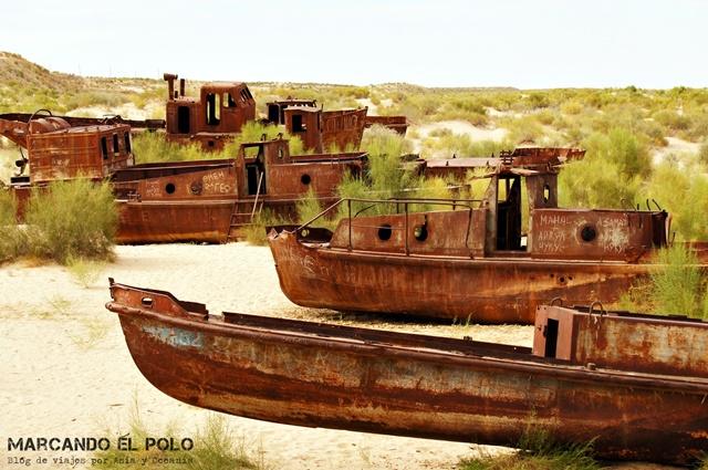 Mar-Aral-Uzbekistan-13