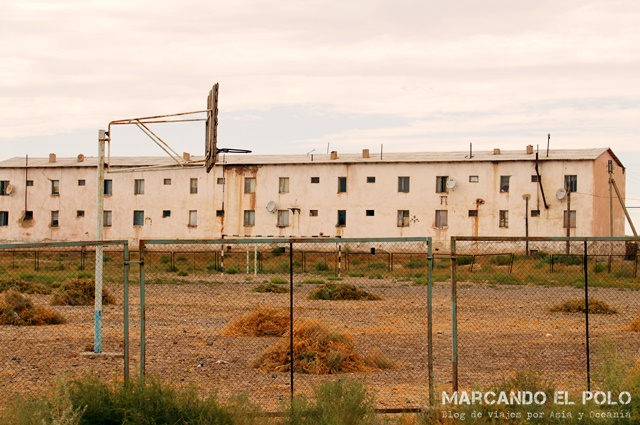 Mar-Aral-Uzbekistan-5