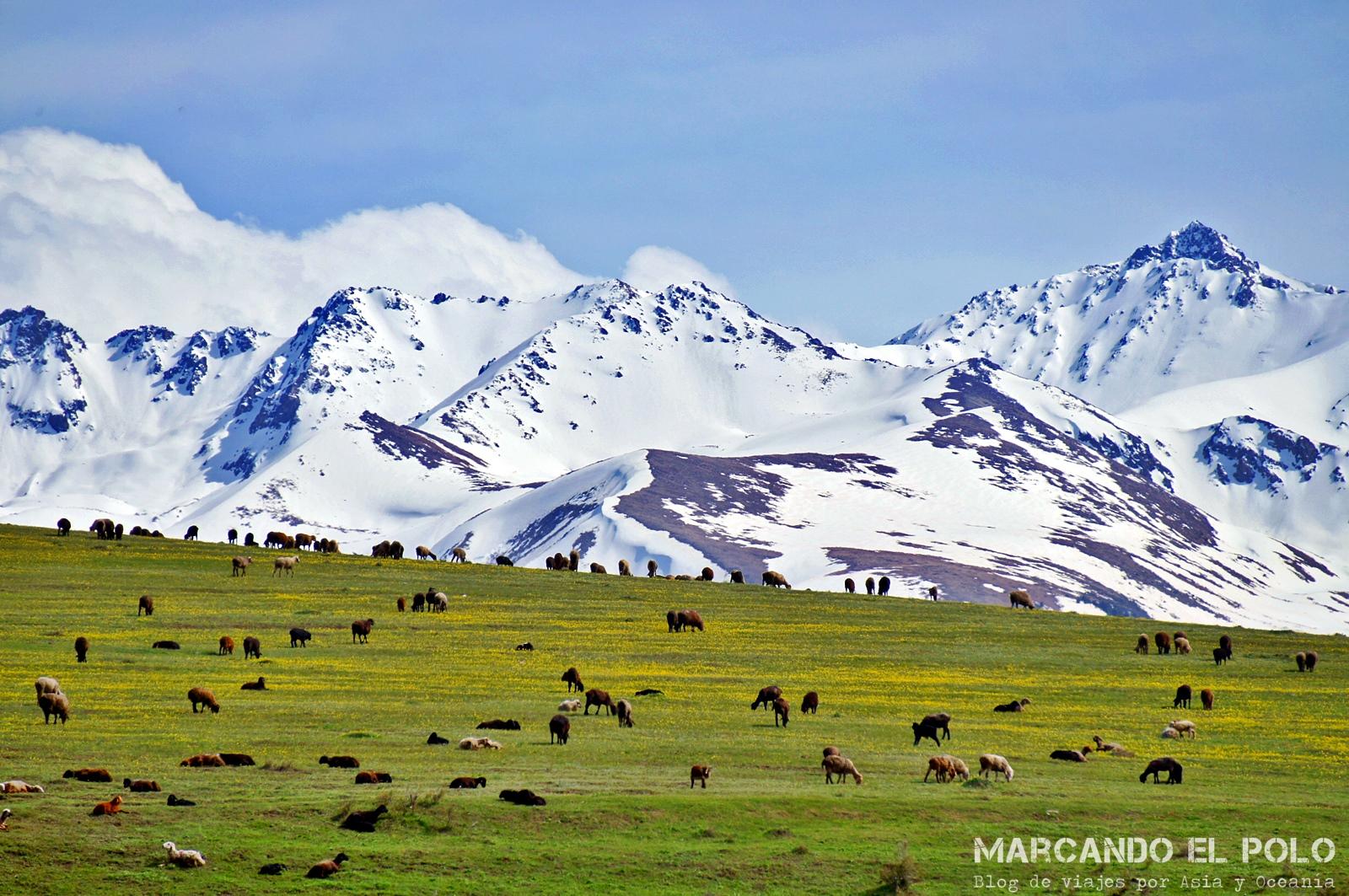 Sin ir muy lejos de Karakol, llegás a lugares como éste...