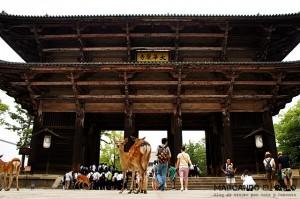 Viajar a Japon - Nadaimon Gate, Nara