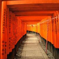 Viajar-a-Japon-arcos-torii-en-Fushimi-Inari-Kyoto-portada