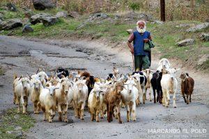 Que ver en Armenia - Alaverdi