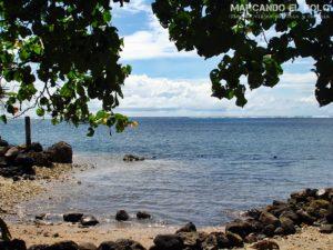 Que ver en Samoa - Reserva Marina Palolo, Apia