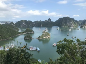 Agencia recomendada Halong Bay - Holiday Travelling - Bahia